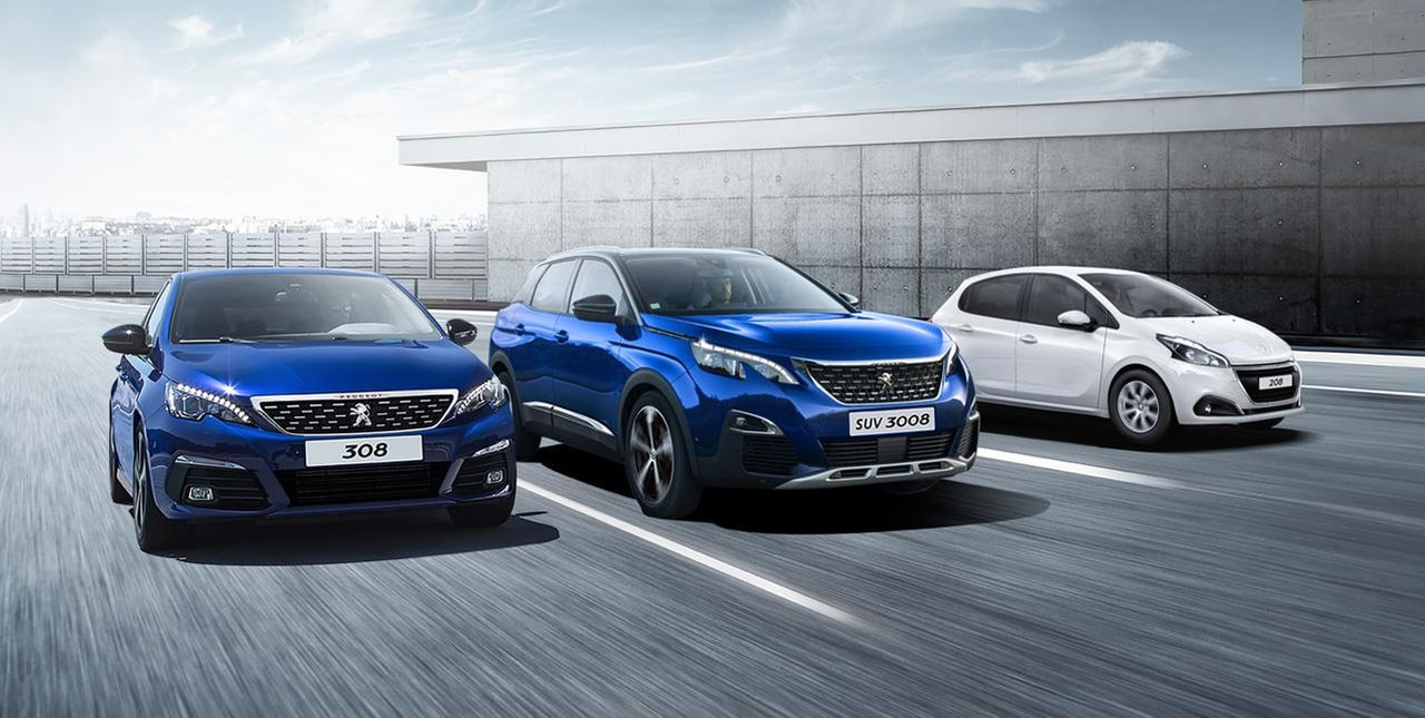 PEUGEOT PROFESSIONNEL GAMME BUSINESS