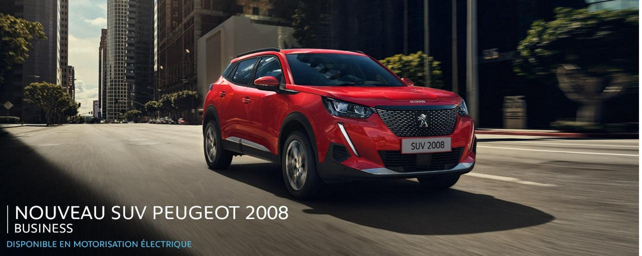 Peugeot SUV 2008 Business